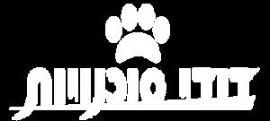 dudi logo white
